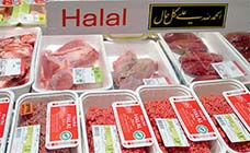 KhaleejTimes-Halal Congress to be held in Sharjah-height140px-21072013